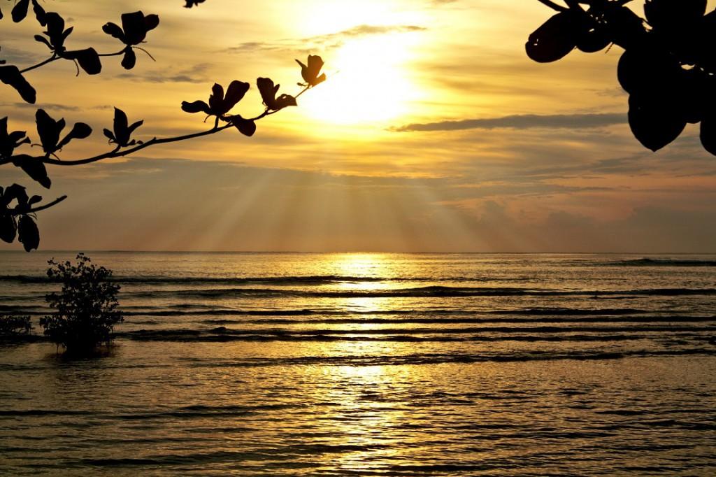 金色に輝く海